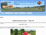 Vignoble Domaine de Cause 46700