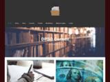 Agence webmarketing DPSO - Paris & Nice