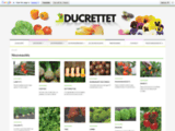 Graineterie : fournisseur de graines et vente de semences