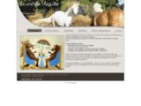 Ecurie de l'Aiguille, pension pour chevaux  à Jauldes en Charente - Présentation