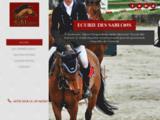 Pension pour chevaux 16 : Écurie des Sablons