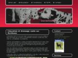 Education et dressage canin sur Bordeaux - Les canailloux - Dressage et éducation canine
