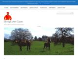 Elevage Juhen-Cyprès : élevage de chevaux dans la Nièvre