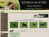 Elevage du Val de Cèze: Braques allemands -kurzhaar- et labradors