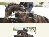 Académie de cheval
