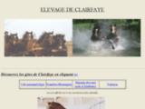 Elevage de clairfaye