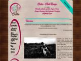 Ostéopathie Animale et Massage Equin