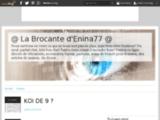 La Brocante d'Enina77