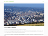 Ecole Supérieure de Commerce de Saint Etienne