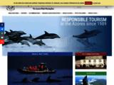 Observation des baleines et dauphins des Açores
