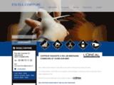 EXCELL COIFFURE - Coiffeur visagiste à Combourg