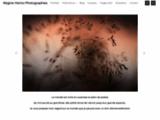 f comme photo, Régine Heintz, photographies, photographe, nature, paysages, voyages, graphisme, Mulhouse, France, Alsace