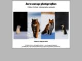 Jura sauvage photographies - Fabien Gréban, photographe animalier