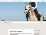 Enseignement et pension équestres chez la Ferme Equestre du Causse à Granès