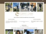 FORMAT CANIN. Educateur, dresseur spécialisé dans les comportements – Consultant – Formateur