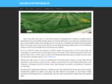 Gazon synthetique et gazon artificiel