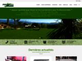 Gazon synthétique - gazon artificiel -pelouse synthétique gazon ornemental  AgCo