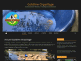 Goldline Orpaillage - L'association du chercheur d'or