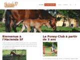 Centre équestre dans les Landes (40) - Pension chevaux, cours et stage d'équitation