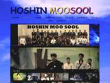 HAPKIDO-HOSHIN-MOOSOOL