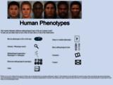 Apercite http://humanphenotypes.net/basic/Mediterranid.html