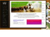KST Tours - L'agence de voyage francophone specialiste Inde du sud -