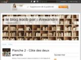 Alexandre, blog, dessinateur, publié, dedicace, festival, bd, bande, dessinée, féerie, humour, planche, illustration
