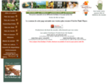 La récolte des thés : vente de thé en ligne