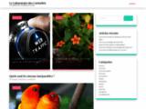 Le Laboratoire des Curiosités - Un cabinet de curiosités sur le web