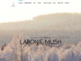 Traîneau à chien en Laponie Suédoise