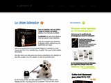 Le labrador, un chien en or - leLabrador.fr