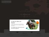 Turf : pronostics gratuits sur la course du quinte