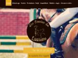 Pension chevaux et cours d'équitation à Lavausseau près de Poitiers - Vienne (86)