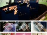 Contenant dragées, boîtes et décoration avec L'instant Dragées