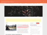 Lombriculture.info, lombric et lombricompostage
