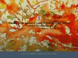 Aquarelle,  couleurs,  papier, pinceaux _ masmoulin  s'est jeté à l'eau  - Blog LeMonde.fr