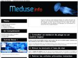 Méduse - Comment soulager une piqure ?
