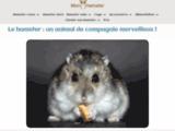 mon-hamster.fr, tout savoir sur le hamster