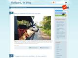 Portail sur le tourisme et comparateur de voyages