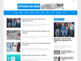 Opinion Du Web - Sondages et opinions des internautes