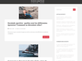 Passion Arbitrage - Un blog qui parle … d'arbitrage