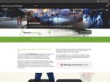 Patinoire synthétique – Achat et Location de patinoires artificielles démontables mobiles ou fixes