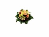 pepinieres jardinerie postulka fleurs Bordeaux fleuriste paysagiste d'interieur