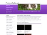 Photo chats