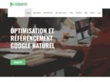 Référencement naturel gratuit et optimisation SEO pour Google