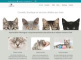Comportementaliste chat La Rochelle (17) et Poitou-Charentes