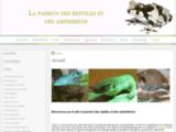 La terrariophilie : reptiles et amphibiens