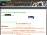 Vente rhacodactylus ciliatus/Lusthilde Gecko