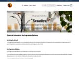 Bougies parfumées de Luxe - Scandles