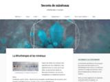 Les secrets des minéraux et la lithothérapie